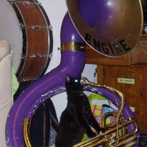 Datcats's avatar