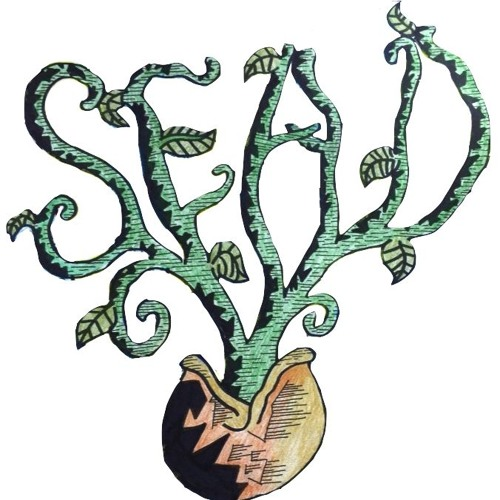 Sead Music's avatar