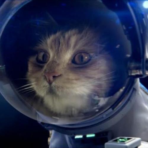 Solarcat Plasma's avatar