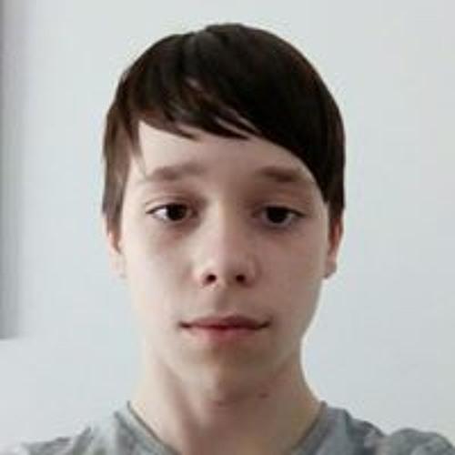 Dávid Mészáros's avatar