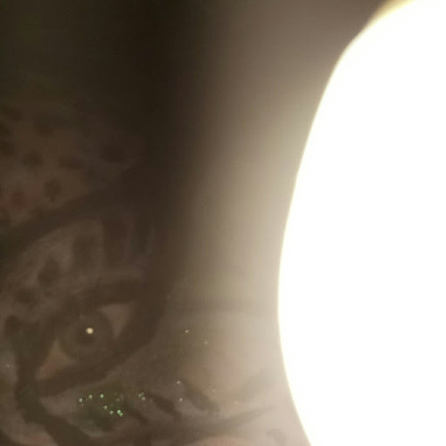 marikixx universal energy's avatar