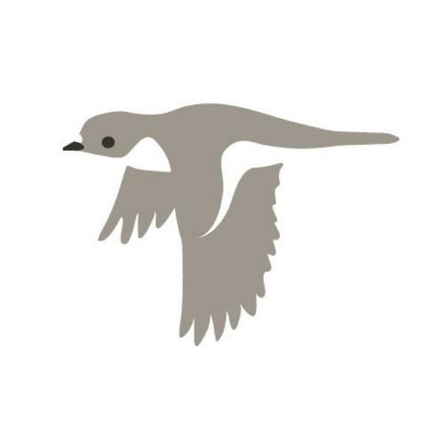 Flightcatcher's avatar