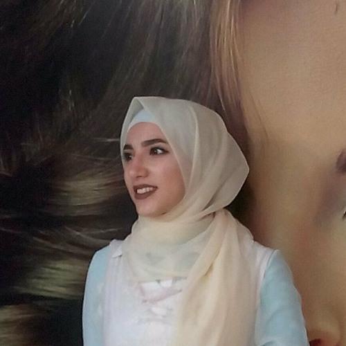 Alaa Eltohamy's avatar
