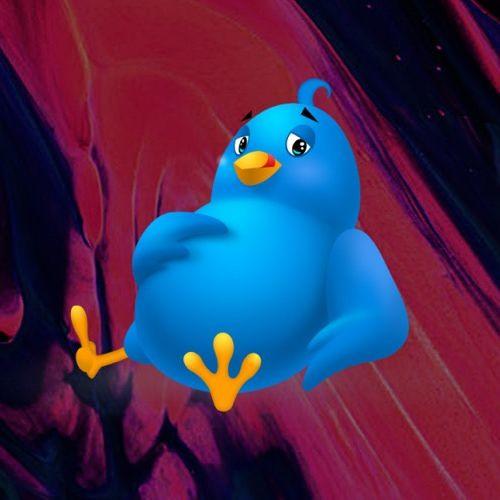 FatBird | Promotion's avatar