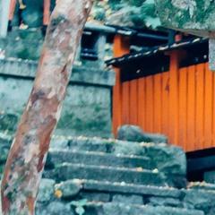 Ōnusa