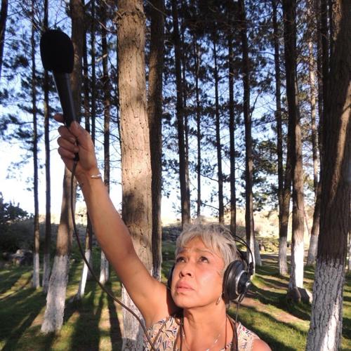 Pita Cortes's avatar