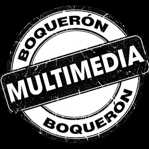 Boquerón Multimedia's avatar