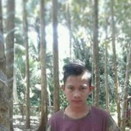 Dwialfarizi Paputangan's avatar