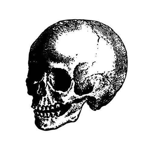 🅒 🅞 🅤 🅒 🅗's avatar