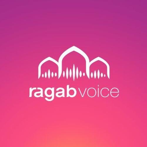 ragab voice's avatar