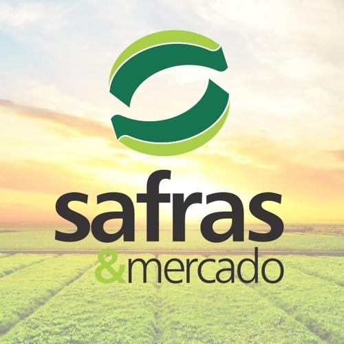 SAFRAS&Mercado's avatar