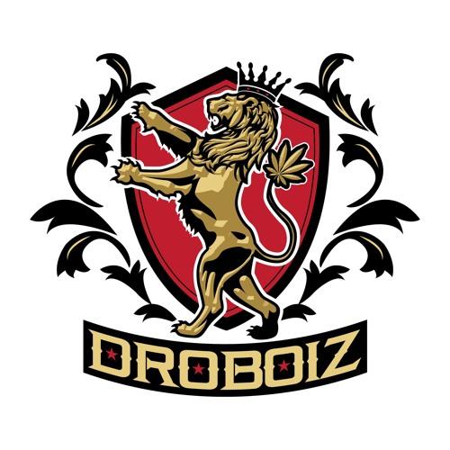 DroBoiz's avatar