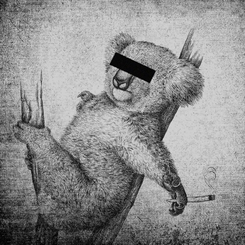 KOLKA POLOLKU's avatar