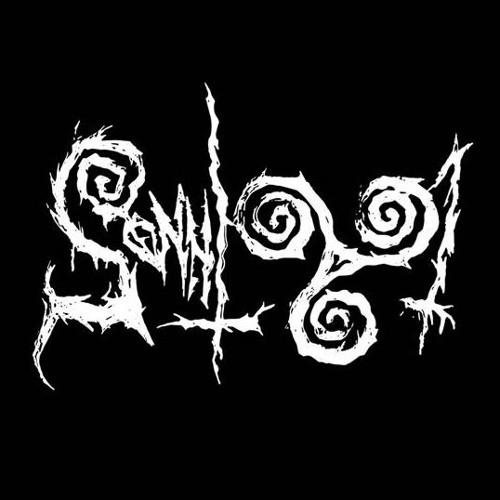 Sonnig 991's avatar