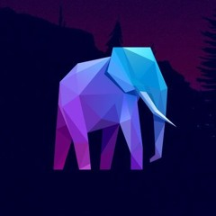 Walking Elephants / Promotion