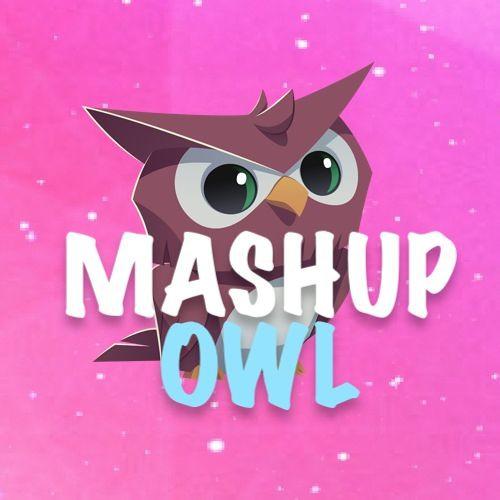 Mashup Owl - Repost's avatar
