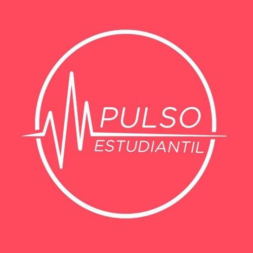 Pulso Estudiantil's avatar