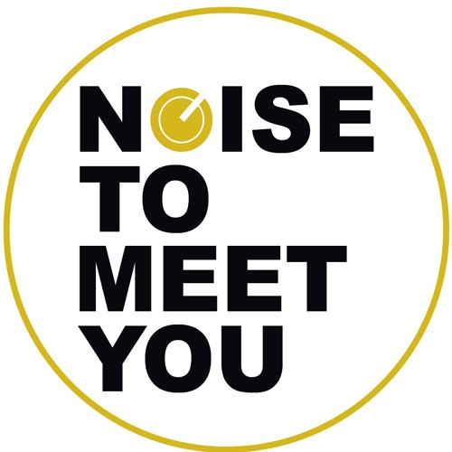 Noise To Meet You Records's avatar