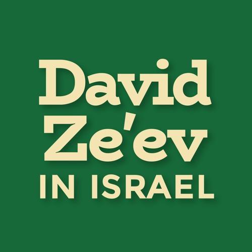 David Ze'ev In Israel: News, Politics, and People's avatar