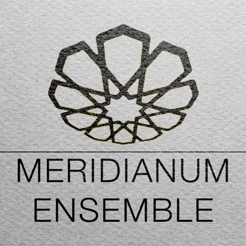 Meridianum Ensemble's avatar