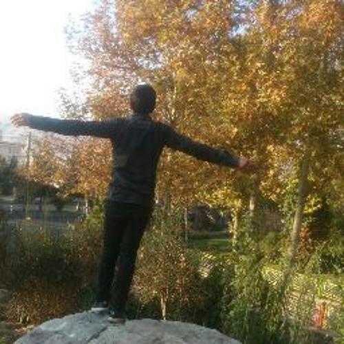 Farid Mohammadi's avatar