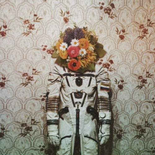 Kam Grasso's avatar