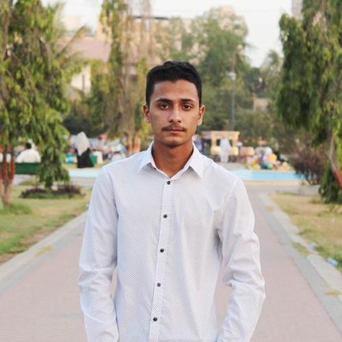Mohsin Hussain's avatar