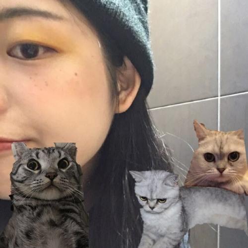 Tonechie's avatar