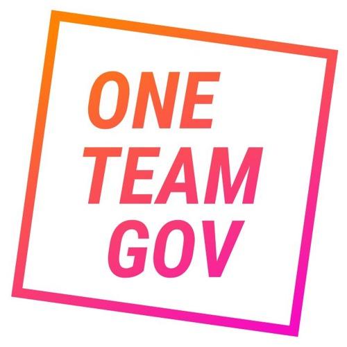 One Team Gov's avatar