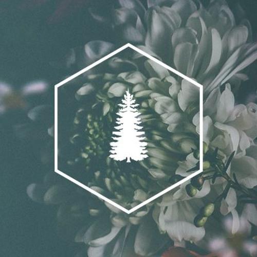 metsä's avatar
