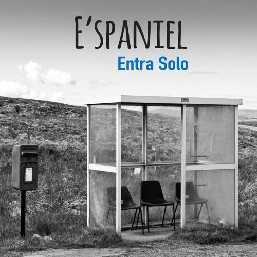 E'spaniel's avatar