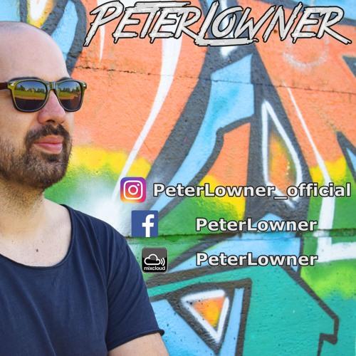 PeterLowner's avatar