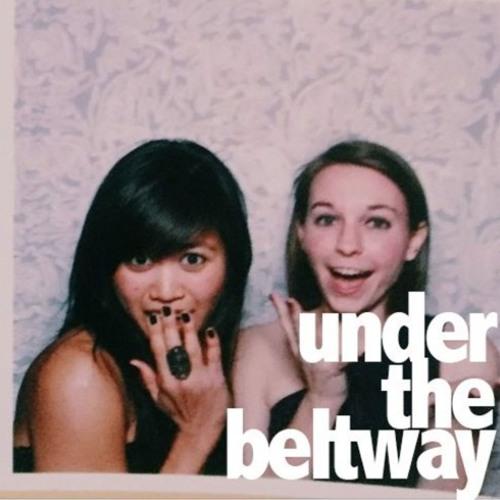 Under The Beltway's avatar