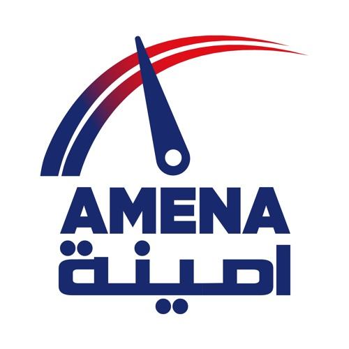 AMENA Auto's avatar