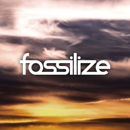 Fossilize's avatar