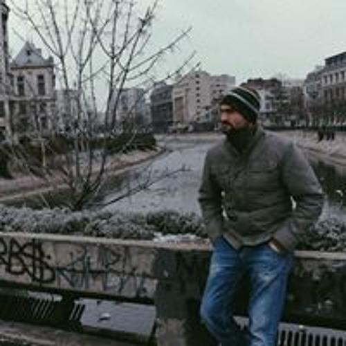 Bogdan Tronciu's avatar