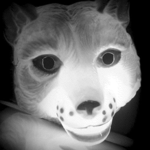 Fatbroo's avatar