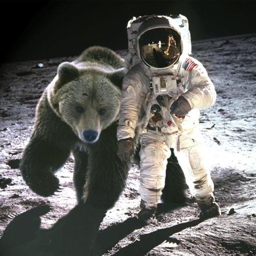 Dj Black Bear's avatar