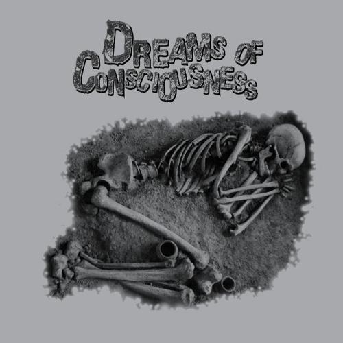 Dreams Of Consciousness's avatar