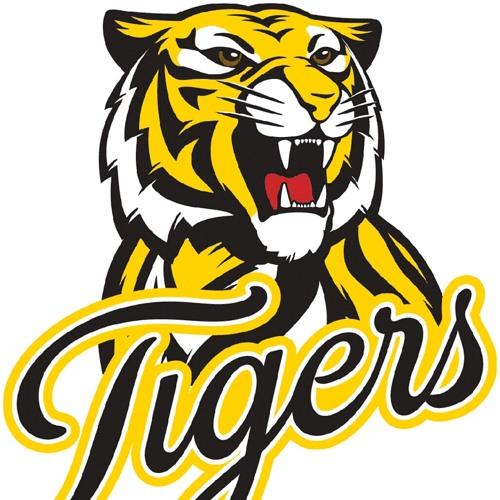 Kingborough Tigers Football Club's avatar
