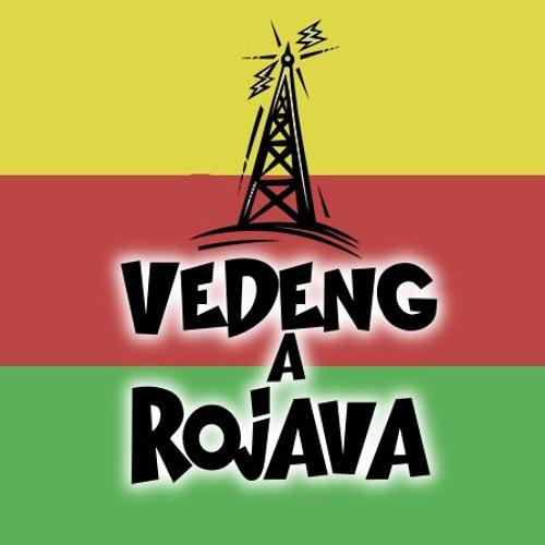 Radio Vedeng a Rojava's avatar