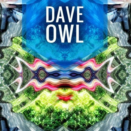 Dave Owl's avatar