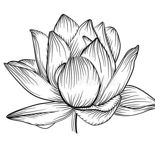 mel sio's avatar
