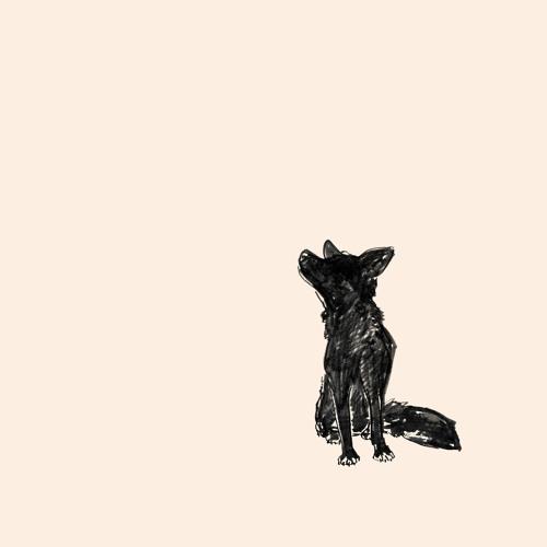Dogleg's avatar