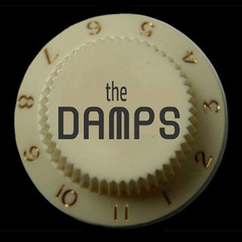 The DAMPS's avatar