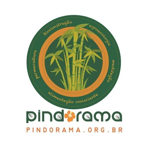 Instituto Pindorama's avatar