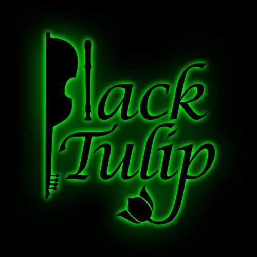 Black Tulip's avatar