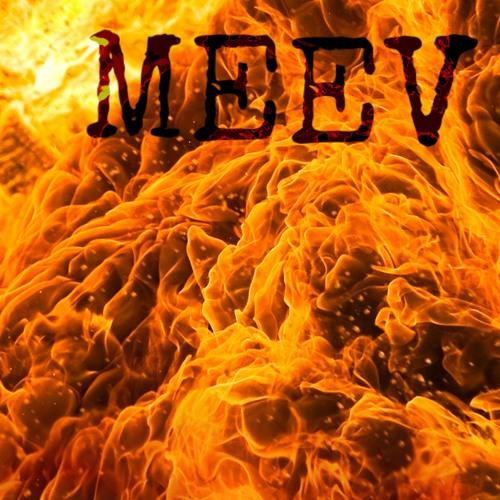 MEEV's avatar