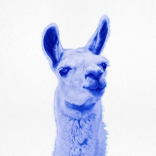 The Jolly Llamas's avatar