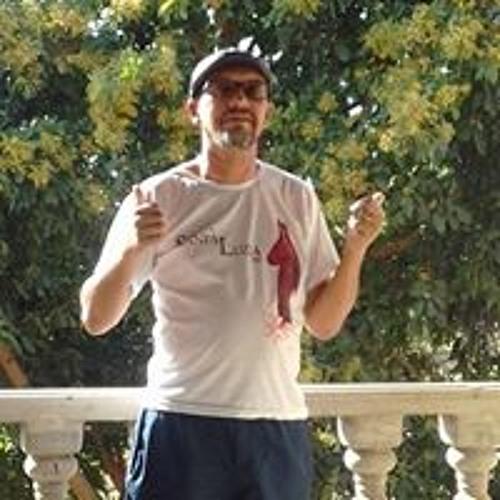Luiz Fernandes Fernandes's avatar